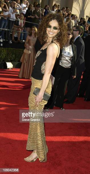 Amy Brenneman during 9th Annual Screen Actors Guild Awards Arrivals at Shrine Exposition Center in Los Angeles California United States