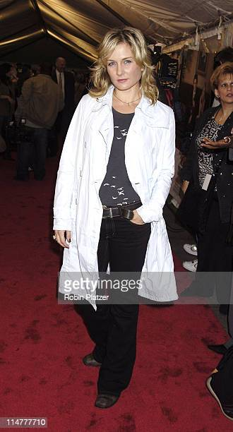 Amy Carlson during Paramount Pictures' Elizabethtown New York City Premiere at Loews Lincoln Square in New York City New York United States