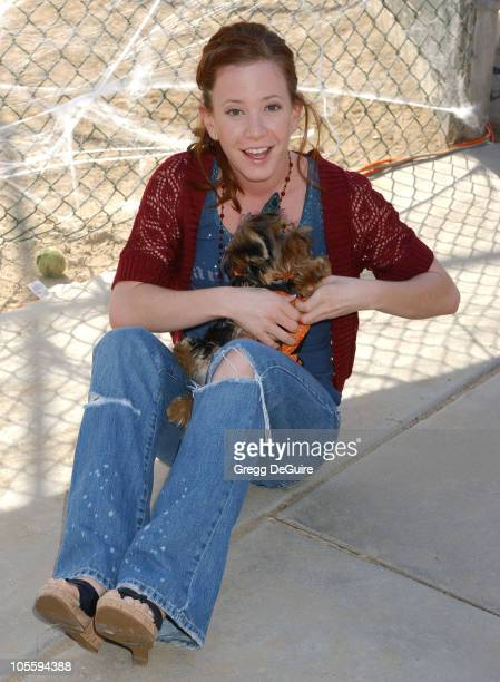 Amy Davidson during 4th Annual Much Love Animal Rescue Bow Wow Ween at Barrington Dog Park in Brentwood California United States