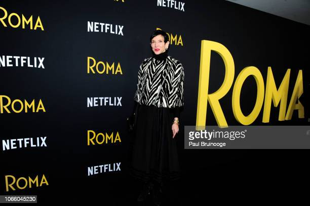 Amy Fine Collins attends Netflix Hosts A Special Screening Of Roma at Directors Guild of America Theater on November 27 2018 in New York City