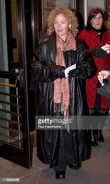 Amy Irving during Opening Night of 'The Caretaker' on Broadway at American Airlines Theatre in New York City New York United States