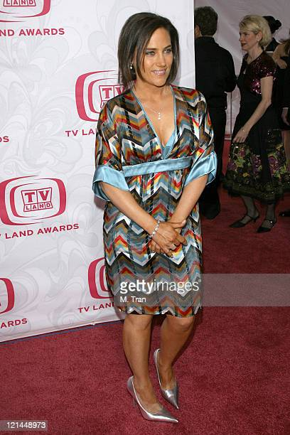 Amy Linker during 5th Annual TV Land Awards Arrivals at Barker Hangar in Santa Monica California United States