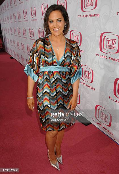 Amy Linker during 5th Annual TV Land Awards Red Carpet at Barker Hangar in Santa Monica California United States