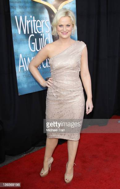 Amy Poehler arrives at the 2012 Writers Guild Awards held at The Hollywood Palladium on February 19 2012 in Los Angeles California