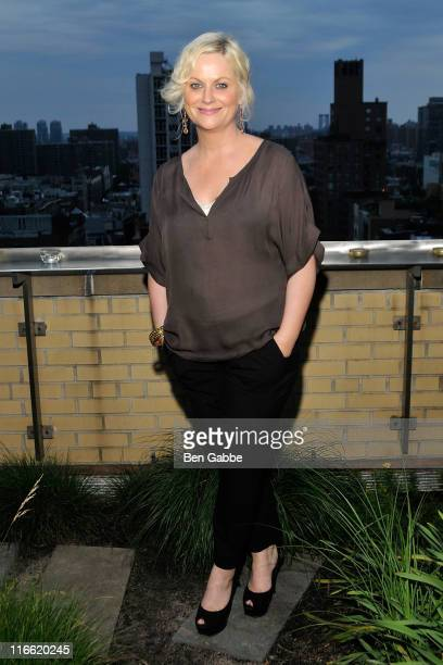 Amy Poehler attends the 2011 Worldwide Orphans Foundation Benefit Gala at 684 Broadway Penthouse E on June 16 2011 in New York City