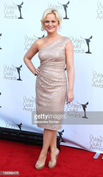 Amy Poehler attends the 2012 Writers Guild Awards held at The Hollywood Palladium on February 19 2012 in Hollywood California