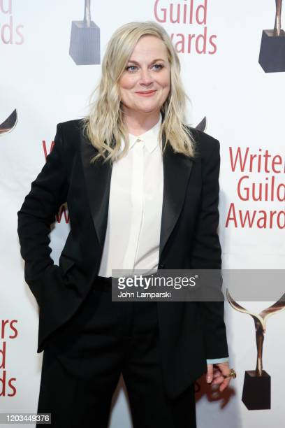 Amy Poehler attends the 72nd Annual Writers Guild Awards at Edison Ballroom on February 01, 2020 in New York City.