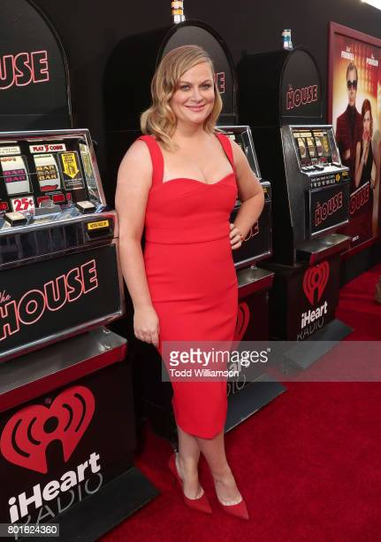 Amy Poehler attends the premiere of Warner Bros Pictures' 'The House' at the TCL Chinese Theatre on June 26 2017 in Hollywood California
