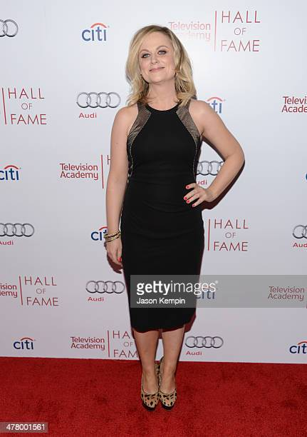 Amy Poehler attends The Television Academy's 23rd Hall Of Fame Induction Gala at Regent Beverly Wilshire Hotel on March 11, 2014 in Beverly Hills,...
