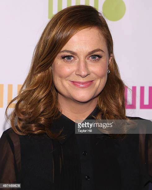 Amy Poehler attends Worldwide Orphans 11th Annual Gala at Cipriani on November 16 2015 in New York City