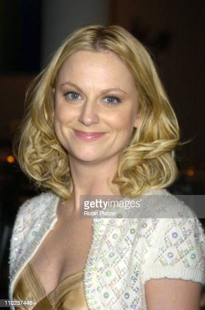 Amy Poehler during NYC and Company Honors Leaders in Tourism at The Museum of Modern Art in New York City New York United States