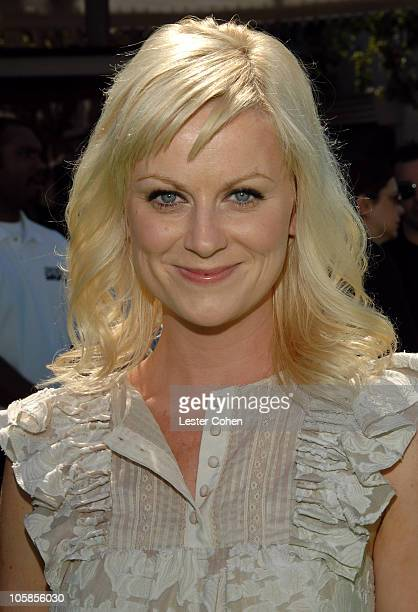 Amy Poehler during 'Shrek the Third' Los Angeles Premiere Red Carpet at Mann Village Theatre in Westwood California United States