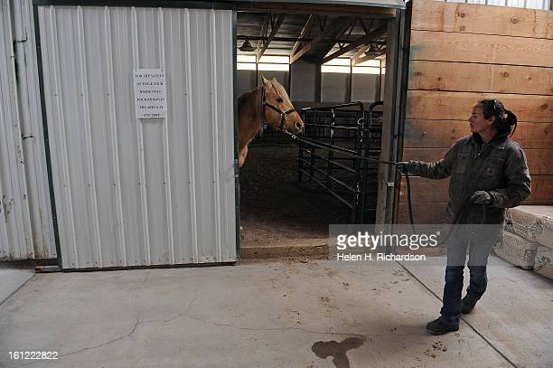Amy Shaver barn attendant tries to coax a horse out of the arena He was afraid of the step between the barn and the arena Many of the horses at the...