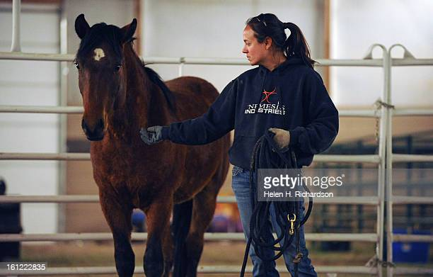 Amy Shaver barn attendant works with Monte a mixed breed horse He has had hardly any human contact and she is working on socializing him to get used...