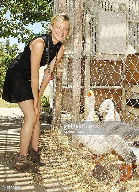 Amy Smart attends The Environmental Media Association's 3rd Annual Garden Luncheon held at Carson Senior High School on June 6 2012 in Carson...