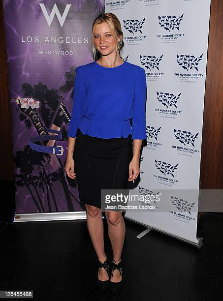 Amy Smart attends the HSUS 'Rescue Paws' event at the W Westwood on November 10 2010 in Westwood California
