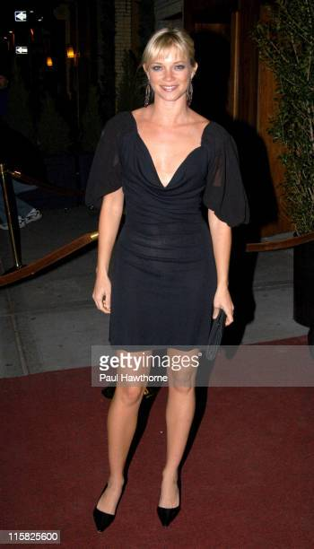 Amy Smart during Sugar Spice Step Up's Second Annual Holiday Benefit Hosted By Ali Larter and Karen Lauder New York at PM in New York City New York...