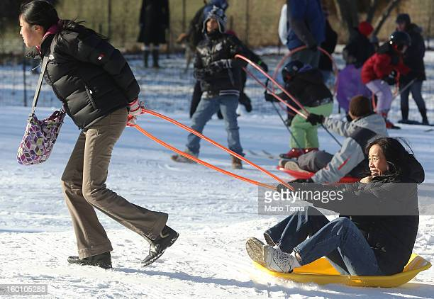 Amy tows Dodo at the Winter Jam in Central Park on January 26 2013 in New York City The annual festival brings skiing snowboarding and snowshoeing to...