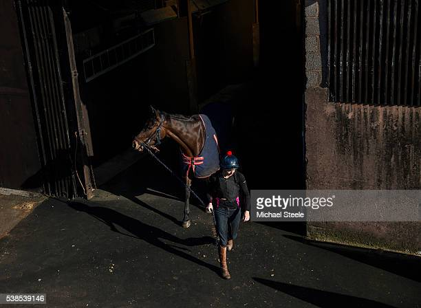 Amy Winter leads Kahaleesi at Sandhill Racing Stables on March 25 2016 in Minehead England Sandhill Racing Stables set in 500 hundred acres of...