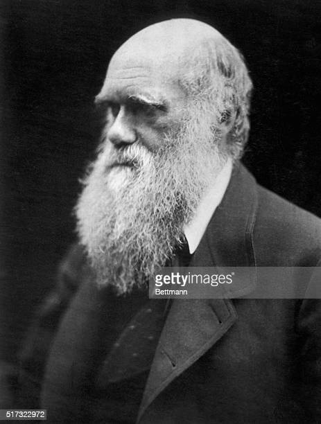 An 1869 portrait of Charles Darwin the British naturalist whose theory of natural selection fundamentally altered the world's opinions about the...