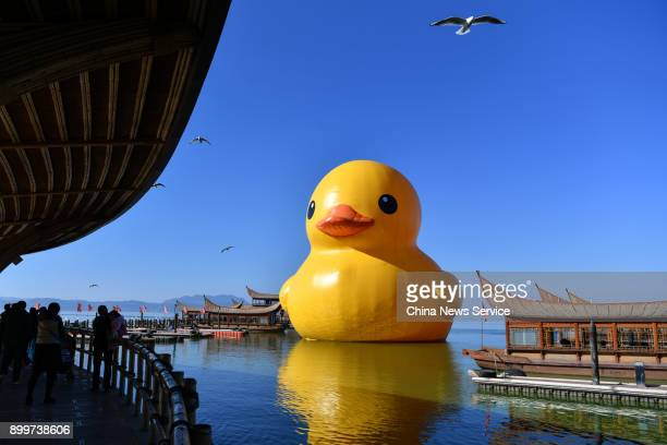 An 18meter high rubber duck designed by Dutch conceptual artist Florentijn Hofman is on display at the Dianchi Lake on December 29 2017 in Kunming...