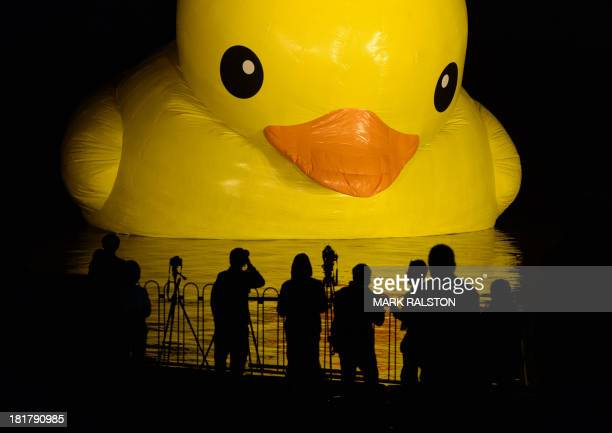 An 18metre tall inflatable duck is pictured during its unveiling at the historic Summer Palace in Beijing on September 25 2013 The duck designed by...