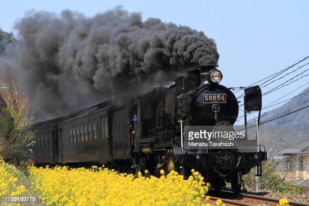 An 8620 Steam Locomotive 'SL Hitoyoshi' runs between Kyusendo and Isshochi stations on March 28 2011 in Kuma Kumamoto Japan