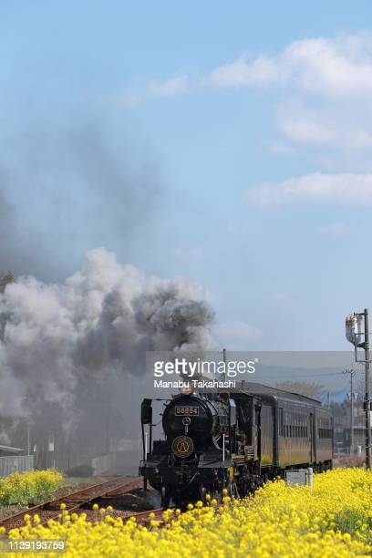 An 8620 Steam Locomotive 'SL Hitoyoshi' runs between Watari and Naraguchi stations on March 25 2011 in Kuma Kumamoto Japan