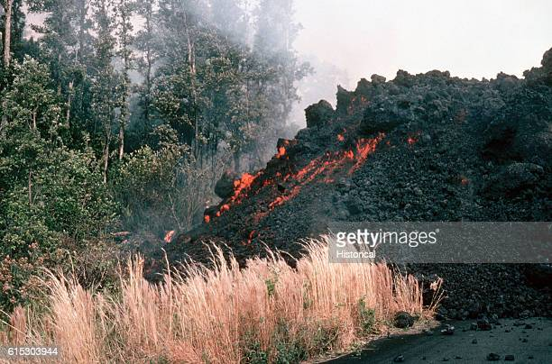 An aa flow cools as it rolls through the Kalapana Royal Gardens in Kilauea's East Rift Zone