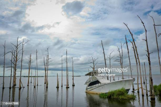 An abandoned boat sits in the water amid dead cypress trees in coastal waters and marsh August 26, 2019 in Venice, Louisiana. Many oak trees and...