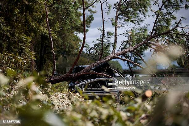An abandoned car damaged by a fallen tree sits along Interstate 16 October 8 2016 in Savannah Georgia Across the Southeast Over 14 million people...