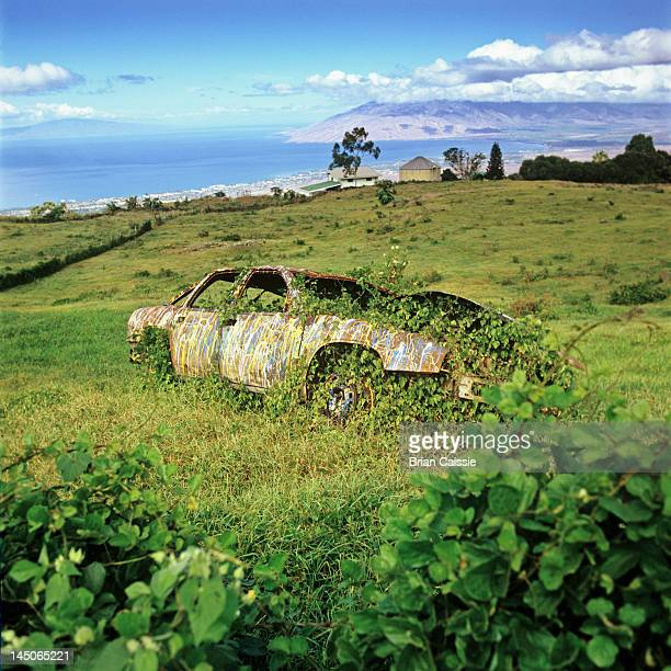 an abandoned car with ivy growing in and around it - obsolete stock pictures, royalty-free photos & images