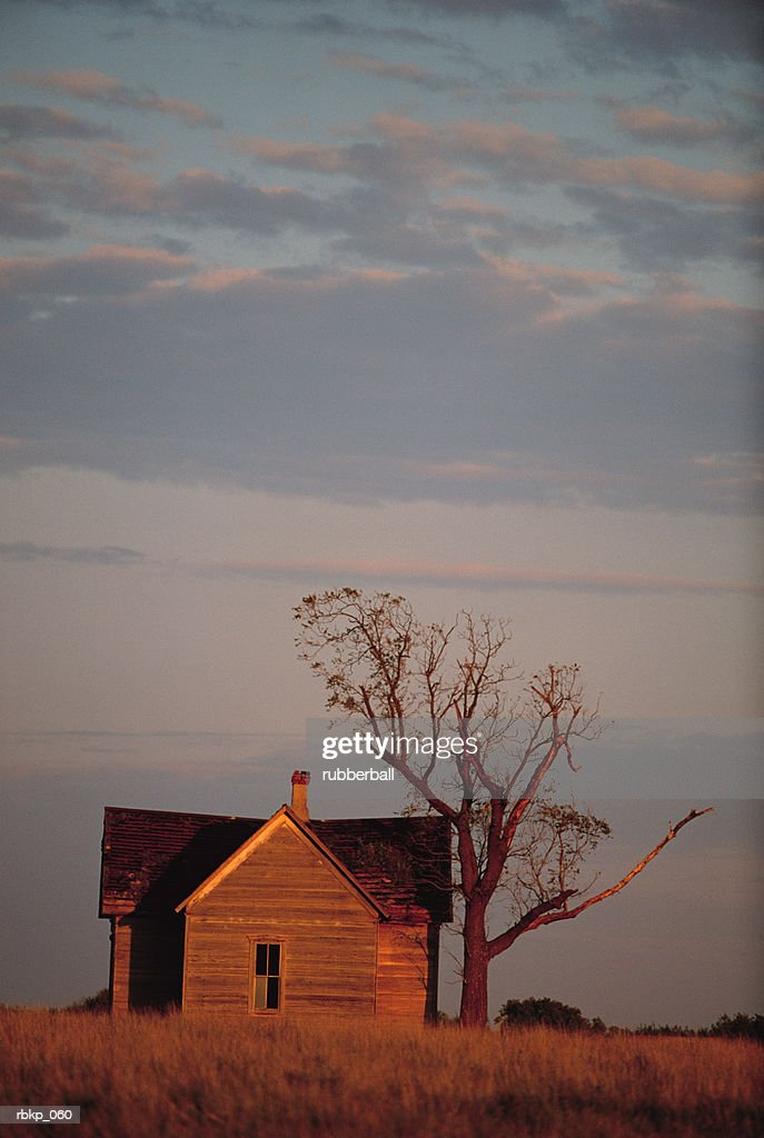 an abandoned farm house with a large dying tree are set in the middle of a prairie with the sun setting on it : Stockfoto