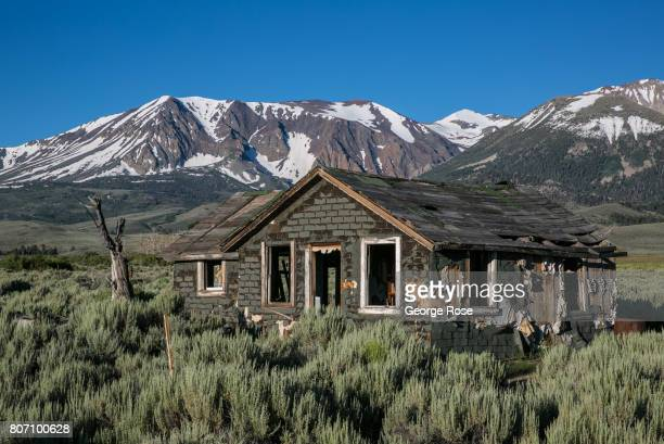An abandoned frontier home is located near the Highway 120 turnoff to Tioga Pass on June 28 near Lee Vining California Following a fiveyear drought a...