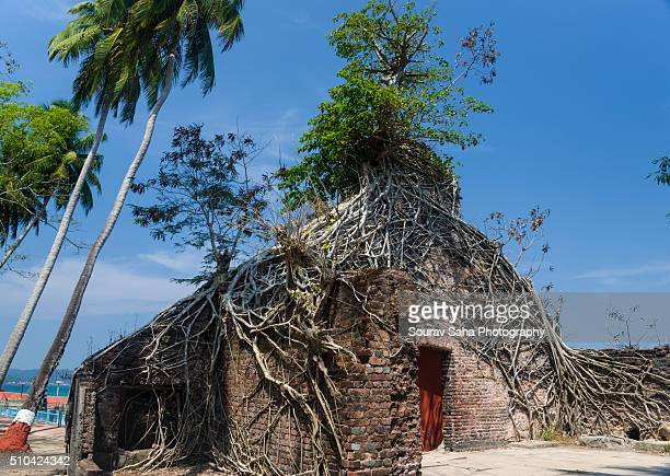 An abandoned house in the Ross Island within Andaman and Nicobar Islands