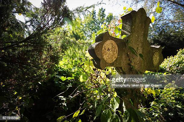 an abandoned tomb - cemetery stock pictures, royalty-free photos & images