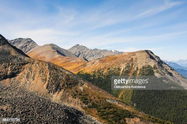 an abstract view of the mountainous terrain seen from the jasper tramway - istock images stock pictures, royalty-free photos & images