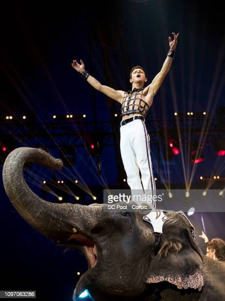 An acrobat and an elephant perform during the 43rd International Circus Festival of MonteCarlo on January 20 2019 in Monaco Monaco