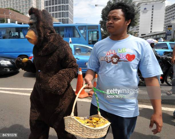 An activist from Centre for Orangutan and wearing an Orangutan costume along with a colleague give bananas to motorists on Valentine's Day as part of...