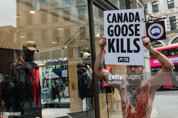 canada goose store london