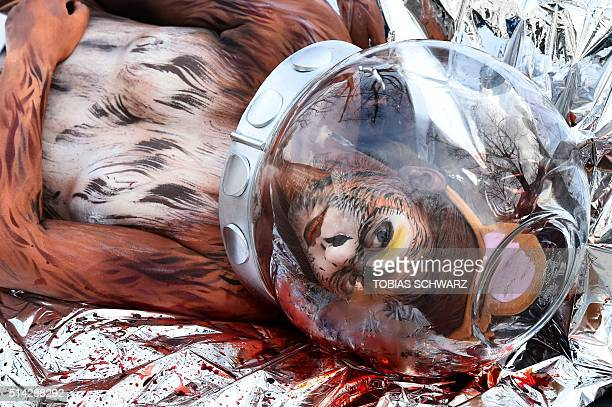 An activist from the group People for the Ethical Treatment of Animals disguised as a dead monkey with an astronaut's helmet lies in front of...