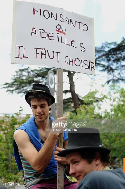 An activist holds a banner that reads 'Monsanto ou abeilles il faut choisir' at a march against Monsanto where 'antiOGM31' cooperative and citizens...