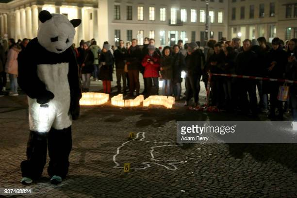 An activist in a World Wildlife Fund panda bear costume looks at the crime scene body outline of an extinct animal in front of the Brandenburg Gate...