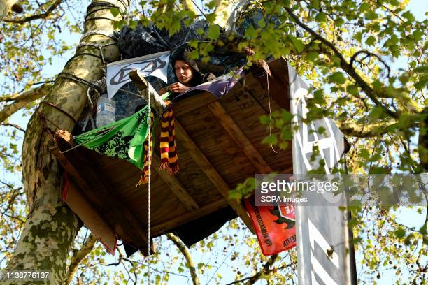 An activist is seen camping on a tree at Marble Arch during the protest Climate change activists from the Extinction Rebellion camped at the Marble...