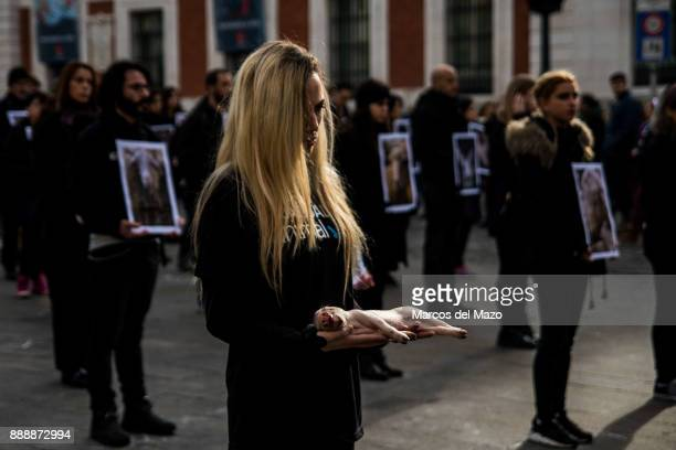 An activist of proanimal rights group 'Igualdad Animal' holds a dead pig while others hold pictures of mistreated animals during a protest for the...