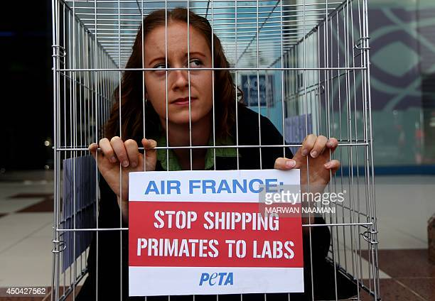 """An activist of the People for Ethical Treatment of Animals is seen imprisoned in tiny cage with a banner reading: """"Air France, Stop Shipping Primates..."""