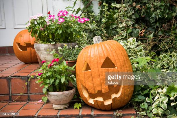 an adornment decorated on the day of halloween. - halloween pumpkin stock photos and pictures