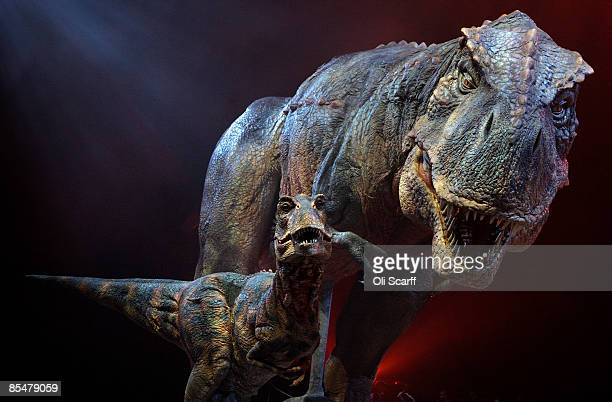 An adult and baby Tyrannosaurs Rex robotic dinosaurs perform in the O2 arena ahead of the forthcoming European leg of the live show 'Walking With...