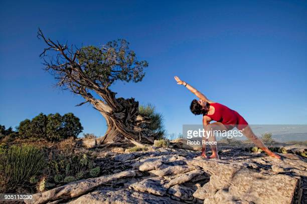 an adult woman practicing a yoga pose outdoors on a rock - robb reece stockfoto's en -beelden