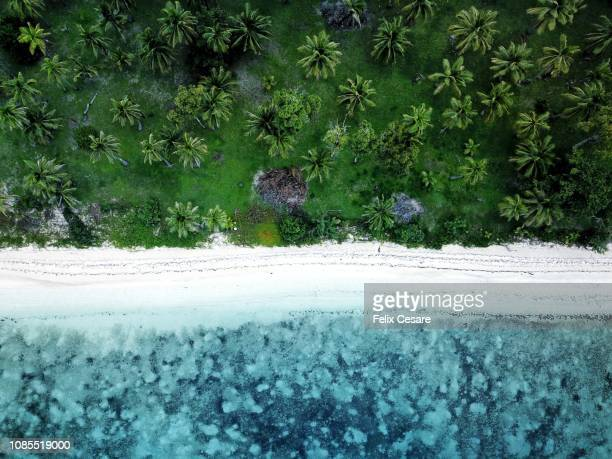 an aerial beach shot of a tropical beach in fiji islands - fiji stock pictures, royalty-free photos & images